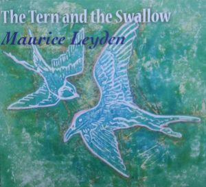 tern-swallow-cover